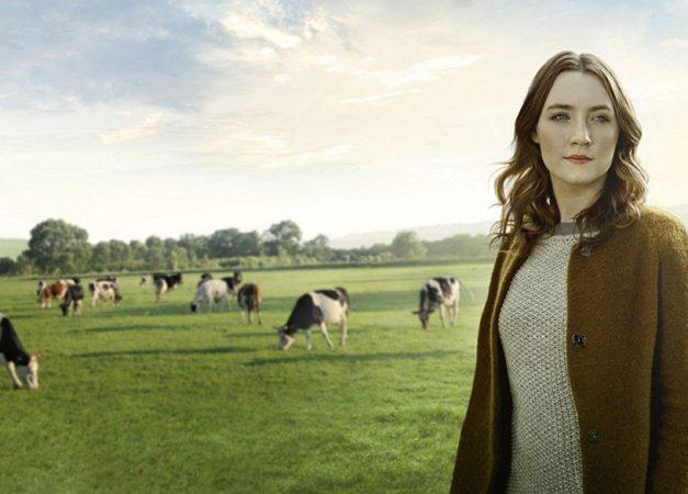 La carne biologica irlandese – Origin Green