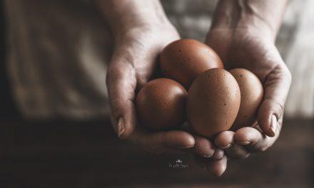 Mangiare uova migliora lo sviluppo cerebrale dei bambini